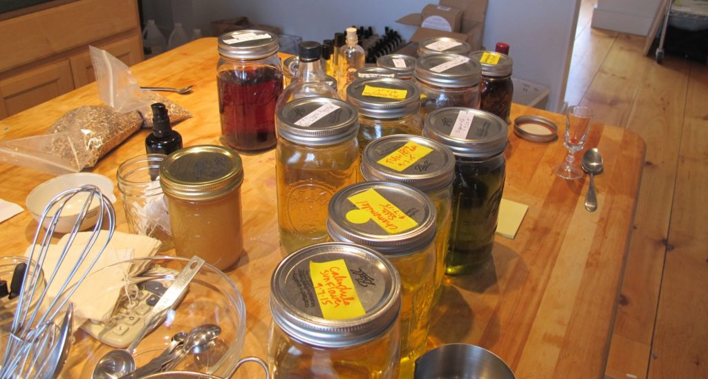 The Herbal Products Supply Chain: A Deeper Look