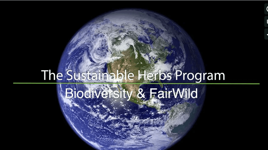 FairWild and Conservation