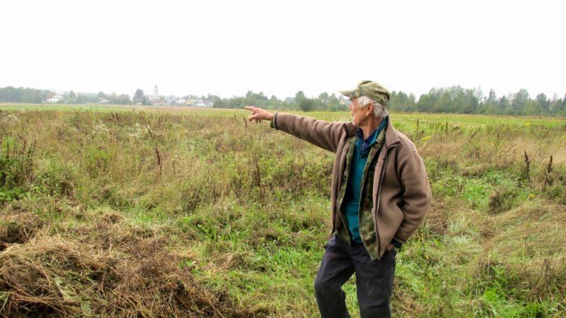 The Hidden Harvest of Wild Plant Trade