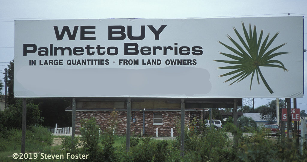 Signs are seen in the Immokalee, Florida area advertising berry buying. Photo by Steven Foster.