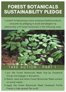 Forest Botanicals Week Sustainability Pledge