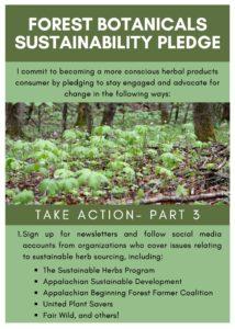 Forest-Botanicals-Sustainability-Pledge-Packet