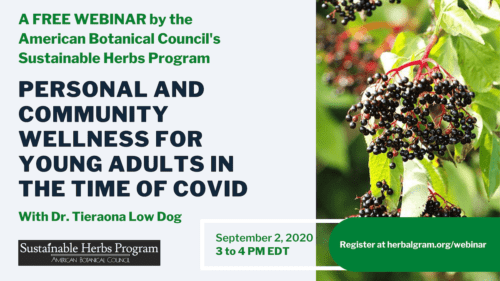Wellness in the Time of COVID: Dr. Tieraona Low Dog