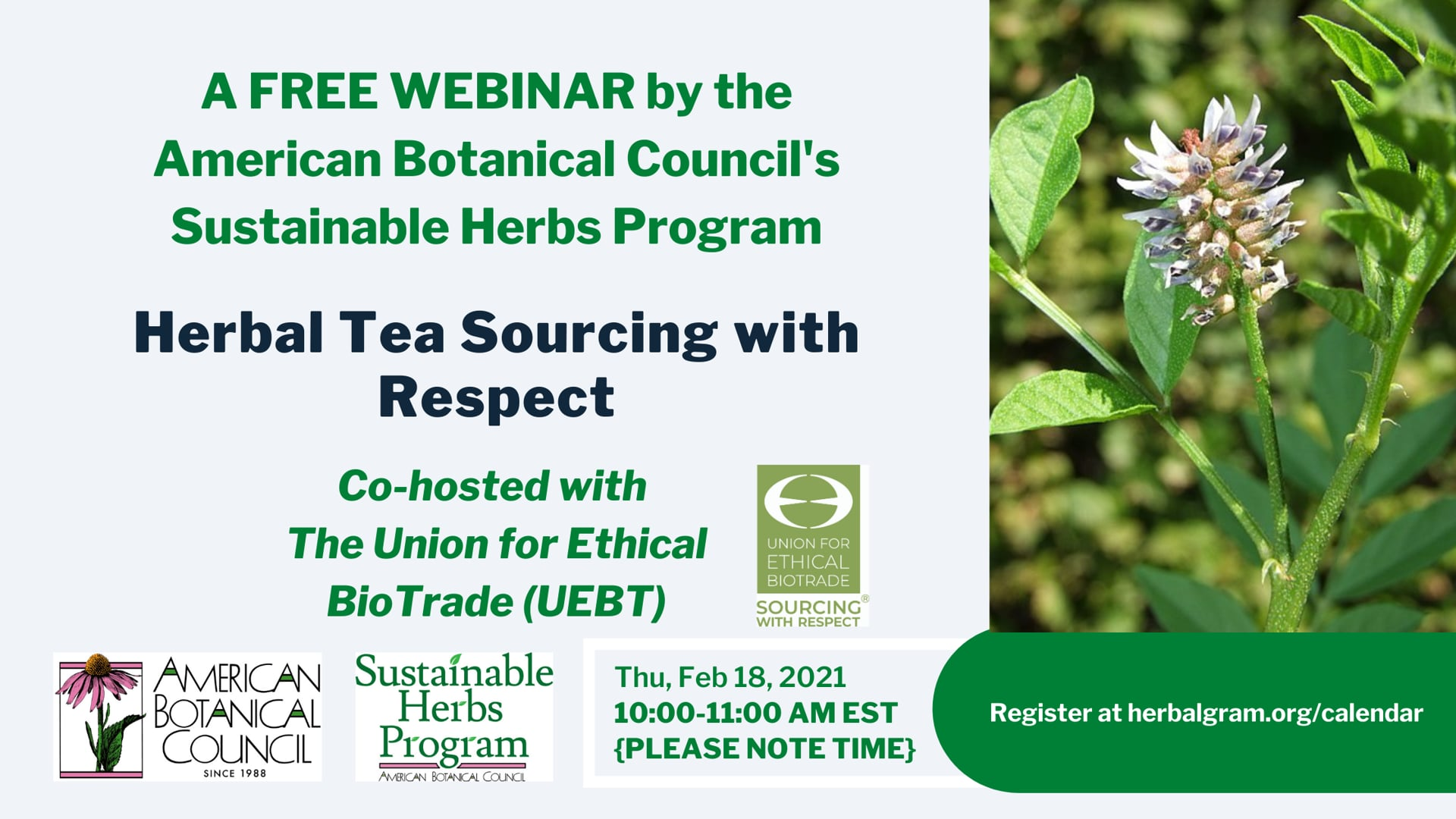 Herbal Tea Sourcing with Respect