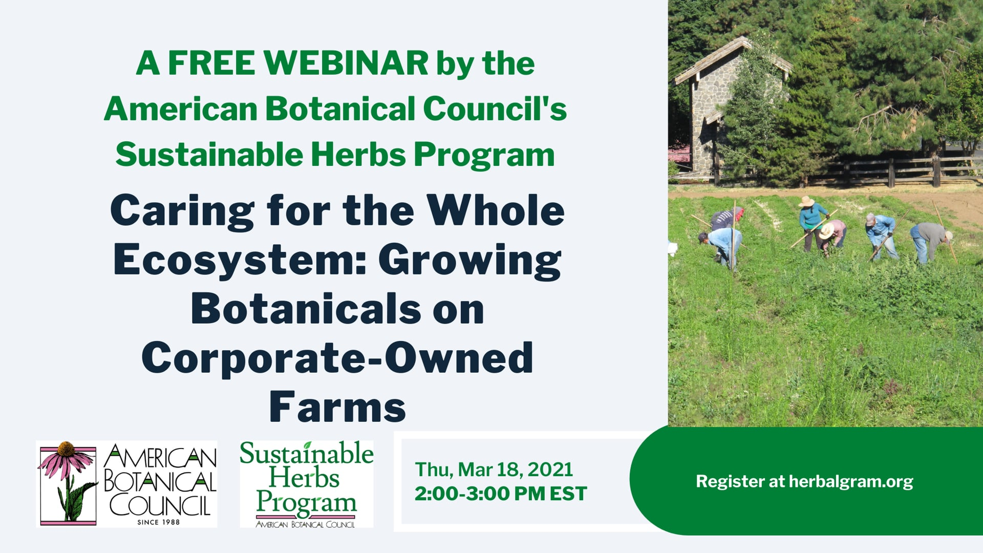 Regenerative Farming Practices on Corporate-Owned Herb Farms